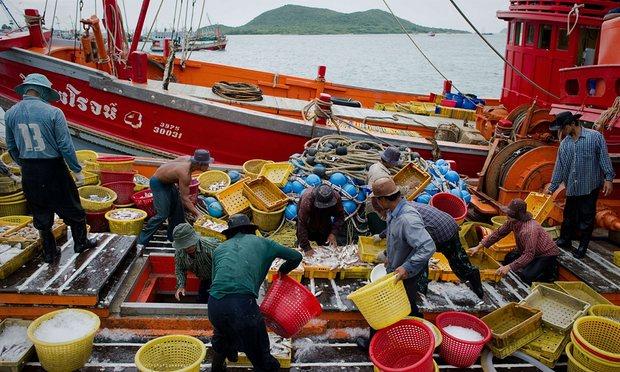 ปัญหาการค้ามนุษย์ในอุตสาหกรรมประมงของไทย ที่มา: http://www.theguardian.com/global-development/2015/feb/18/thailand-failing-tackle-fishing-industry-slavery